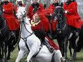 Королевская конная гвардия провела смотр в Гайд-парке