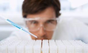 Правки в геном: От ГМО-кукурузы — к ГМО-человеку