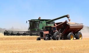 Турция опять отказывается от российской пшеницы