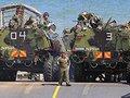 Иванов сравнил Россию и НАТО со слоном и моськой