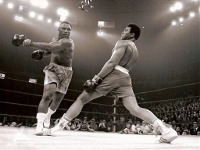 Человека создал не труд, а бокс?