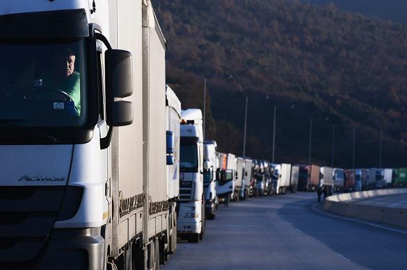 Теневой канал поставок овощей в Россию перекрыли белорусские власти