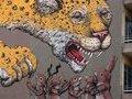 Уличное искусство расскажет о проблемах Мексики