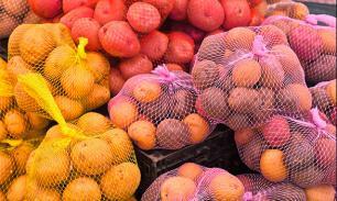 В Ярославской области будет создан первый агропромышленный кластер