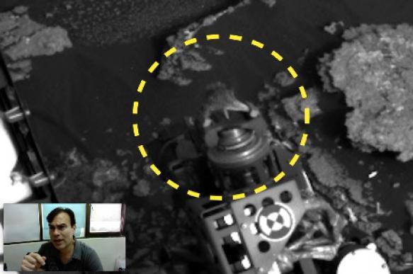 На Марсе нашли живую ящерицу? ВИДЕО