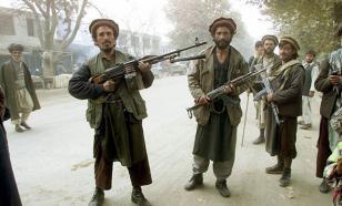 """""""Талибан"""" поможет в борьбе против ИГИЛ"""