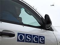 Вашингтон убрал щупальца от ОБСЕ. Договоримся?