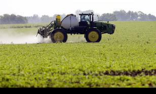Оксана Дмитриева: Эффективнее всего вкладывать бюджетные средства в аграрный сектор