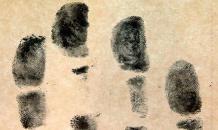 Отпечаток пальца - вот мои документы!