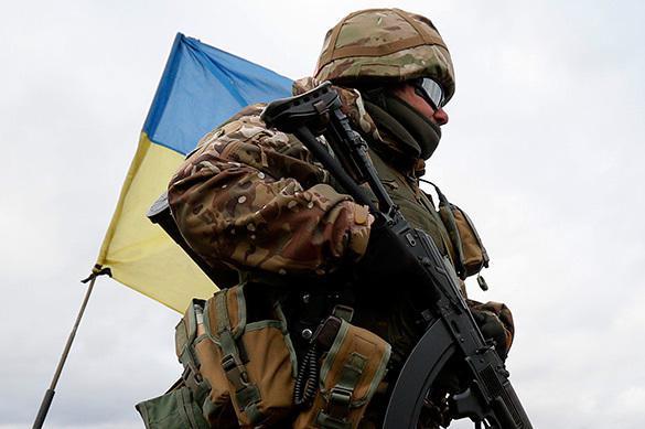 Gallup доказал ложь Порошенко: украинцы против НАТО