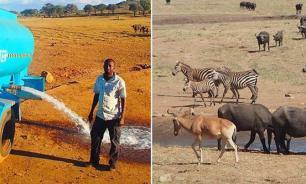 Кенийский фермер поит диких животных водой во время засухи