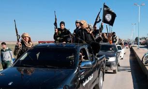 В Ираке убит бывший борец сборной Азербайджана, вербовавший смертниц для ИГ