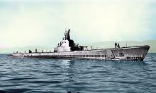 Утонувшую во времена Второй мировой войны субмарину США нашли у берегов Курил