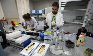 МГУ обогатит российскую антидопинговую лабораторию фундаментальной наукой