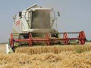 Проблемы села: зерна много, техники мало