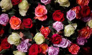 В ночь на 8 марта из рижского магазина украли все розы