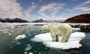 В глобальном потеплении виноваты оползни