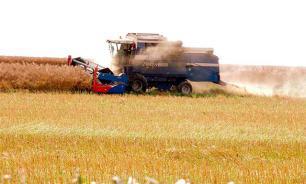 В России введут в оборот 15 млн гектаров неиспользуемых сельхозземель