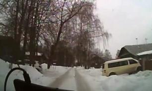 Женщина на упряжке с хаски влетела в автомобиль. ВИДЕО
