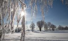Гидрометцентр опроверг 33 градуса холода в Новый год