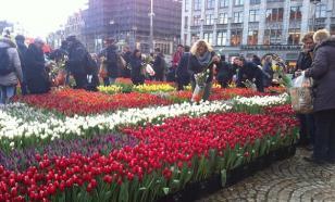 День тюльпанов празднуют в Амстердаме