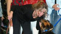Брижит Бардо исполнилось ровно восемьдесят. Состоявшаяся актриса, мечта многих мужчин, символ женственности для многих женщин, нашла смысл жизни вдали от света софитов, уйдя со сцены на пике славы и посвятив остаток жизни защите животных.