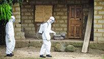 Эбола захватывает мир