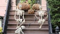 Похоже, американской актрисе Лив Тайлер совсем не терпится справить самый жуткий праздник Хэллоуин, который отмечается в ночь с 31 октября на 1 ноября - накануне Дня всех святых. Звезда экрана озаботилась праздничными декорациями и, надо сказать, постаралась на славу.