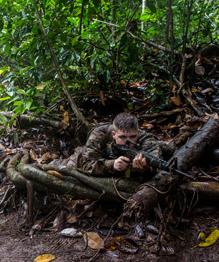 Армия США осваивает джунгли