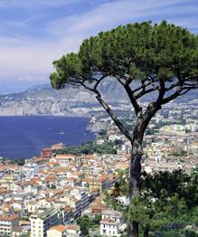 Неаполь ждет участь Помпеи?