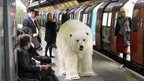 По Лондону расхаживает белый медведь