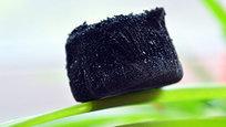 Техногенная революция продолжается. Китайскими учеными разработан самый легкий материал в мире. Его вес настолько мал, что легко удерживается на цветочных лепестках.