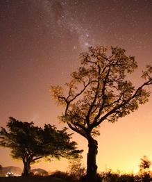 Взгляд на таинственный Млечный путь и зарисовки с мыса Доброй Надежды.