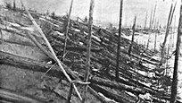 17 (30) июня 1908 года в начале восьмого утра по местному времени в районе реки Подкаменной Тунгуски прогремел взрыв, мощность которого оценивается в 40-50 мегатонн, что соответствует энергии самой мощной из взорванных водородных бомб. Вот уже 107 лет человечество говорит о Тунгусском метеорите, в точности не зная, чтоже произошло на самом деле.
