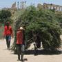 Марокко - страна с богатой культурой и историей.В первом тысячелетии до нашей эры марокканские земли принадлежали Карфагену. На юге Марокко граничит с пустыней Сахара, на севере - со Средиземным морем, на западе - с Атлантическим океаном.