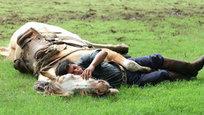 Заклинатель лошадей