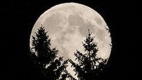 В ночь с 10 на 11 августа все жители земного шара могли увидеть суперлуние — когда естественный спутник оказался ближе всего к Земле — примерно на расстоянии 356 тысяч километров. В связи с этим Луна стала на 30 процентов ярче и на 14 процентов больше.