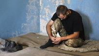 Армия Украины: Допрыгались!