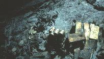 Американское судно, перевозившее почту в Центральную Америку, погибло из-за урагана в сентябре 1857 г. Это была одна из самых крупных морских катастроф в американской истории. 425 человек погибли и тысячи фунтов золота остались на дне океана. Это история об охотнике за морскими сокровищами, который стал современным пиратом.