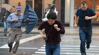 Шесть человек погибли в результате различных инцидентов, вызванных тайфуном  Фанфон , который обрушился на Японию.