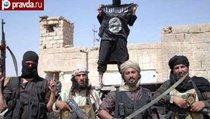 Россияне в Исламском государстве: уже около 5 тысяч
