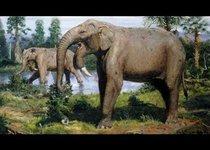 Гигантского древнего слона нашли в Болгарии