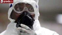 Лихорадка Эбола пришла в США