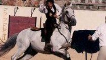 Тореадор Лидия — красавица, заколовшая 600 быков