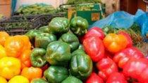 Осторожно: овощи «с таблицей Менделеева»!