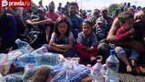Турцию уличили в расстреле беженцев