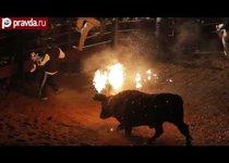 Огненная коррида в Испании