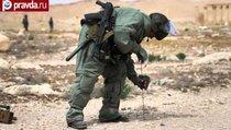 Российские саперы спасают Пальмиру