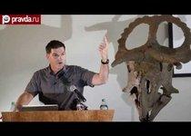 Ученые нашли нового динозавра