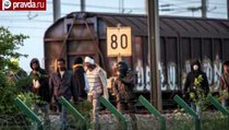 Беженцы под Ла-Маншем: увидеть тоннель и умереть